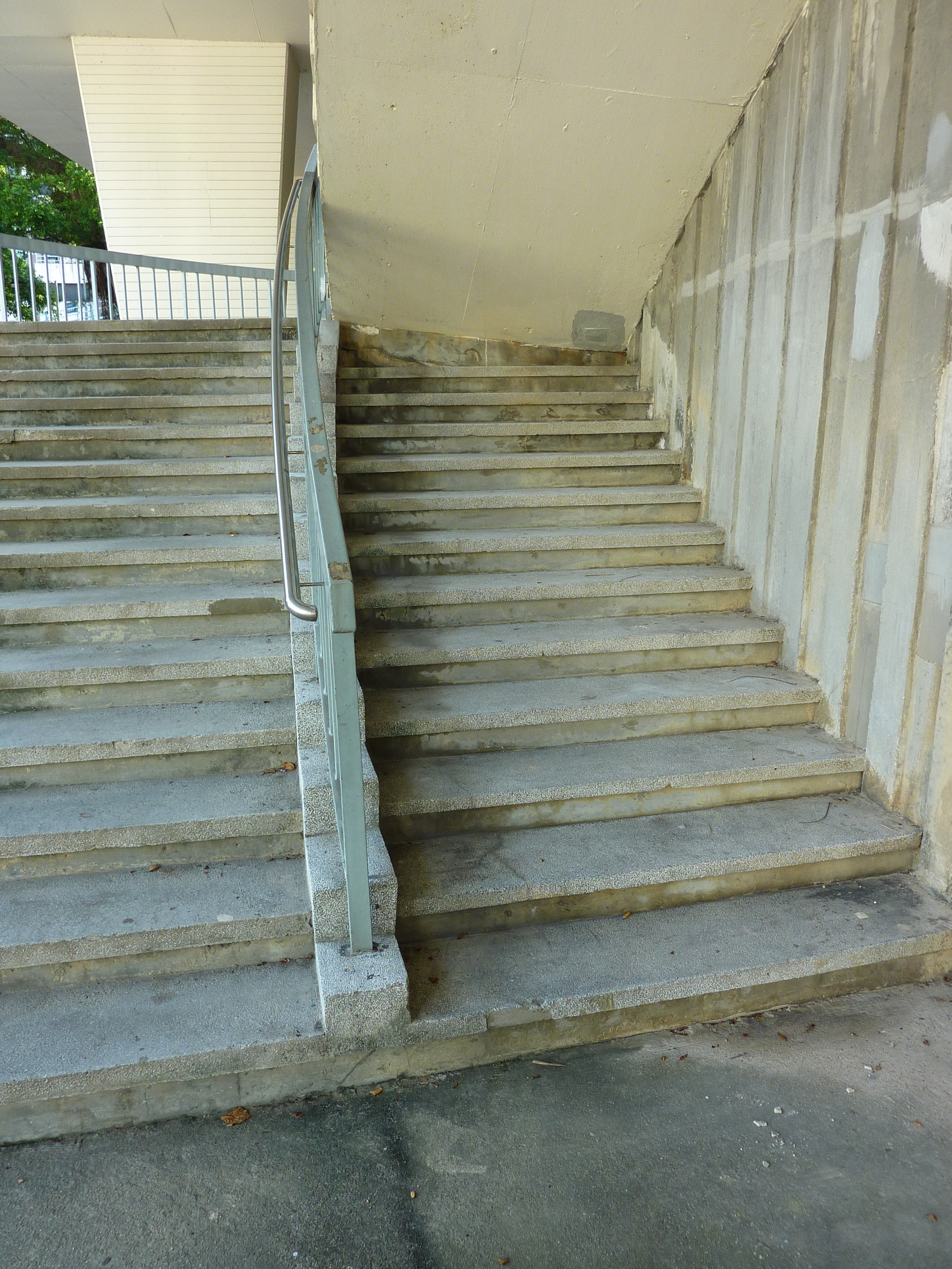 Stairs To Success: Hong Kong Zoological And Botanical Gardens: Green There