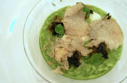 vasco hong kong truffle risotto