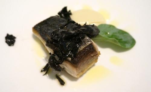 arcane hong kong mackerel